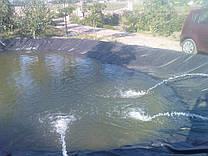 Строительство искусственного пруда 50м3.