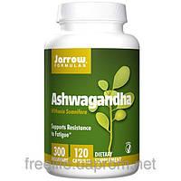 Ашваганда, Jarrow Formulas, 300 мг, 120 капсул