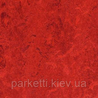 Натуральний лінолеум Forbo Marmoleum Decibel 3,5 мм; всі декори
