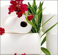 Бумажные полотенца, скатерти, салфетки, туалетная бумага