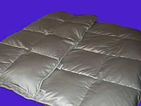 Одеяло пуховое 172х205 70% пуха кассетное IGLEN