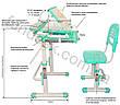 Комплект парта и стул-трансформеры FunDesk Sorriso Blue, фото 3