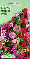 """Семена цветов Кларкия изящная махровая, смесь, однолетнее 0.3 г, """"Елітсортнасіння"""", Украина"""
