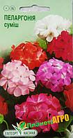 """Семена цветов Пеларгония зональная, смесь, многолетнее 5 шт, """"Елітсортнасіння"""", Украина"""