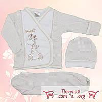 Набор с шапочкой для малышей от 0 до 3 месяцев (4914-1)