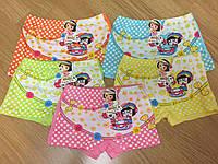 Трусы детские шортики с ярким принтом 4-8 лет