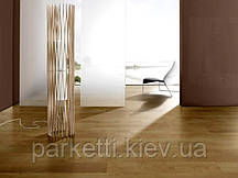 Ламинат Parador 1475648 Click in V4m Дуб натур