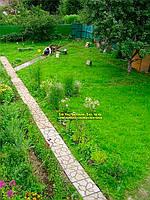 Эта форма трафарет - пока не доступна, но мы разрабатываем похожую форму для дорожки. Очень симпатичная дорожка в саду получилась.