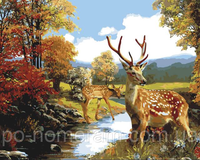 Картина по номерам олень