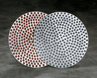Диски тонкой шлифовки ApexHercules, Buechler