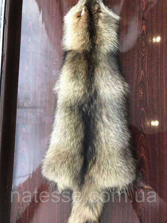 Купить шкуры мех енота Киев Днепропетровск Одесса магазин меха