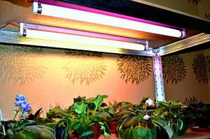 ФИТО лампы и светильники для цветов