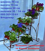 Сенполия-1, подставка для цветов на 5 полок