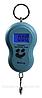Кантер (40 кг) электронный весы HZT /6-1