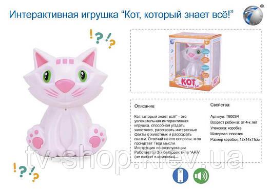 Интерактивный кот , который знает все