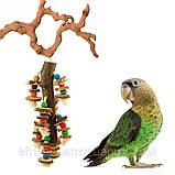 Дерев'яна іграшка для папуги (Мозайка), фото 4