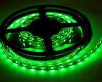 Светодиодная лента smd 3528 60 led/m 12V зеленая №1