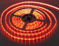 Светодиодная лента smd 3528 60 led/m 12V красная герметичная №1