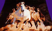Плед из микрофибры Лошади, 160*210, 200*220, Польша, фото 1