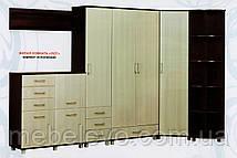 Шкаф угловой ШУ-700 Уют ДСП   2020х720х400мм  Абсолют, фото 3