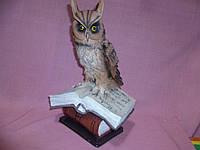Сова на книгах статуэтка фигурка 31х22х20 см