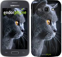 """Чохол на Samsung Galaxy J1 (2016) Duos J120H Красивий кіт """"3038u-262"""""""