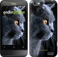 """Чехол на HTC One V t320e Красивый кот """"3038u-227"""""""