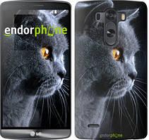 """Чехол на LG V10 H962 Красивый кот """"3038u-370"""""""