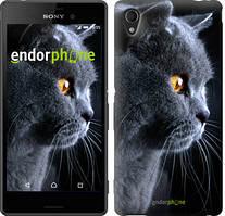 "Чехол на Sony Xperia M4 Aqua Красивый кот ""3038c-162"""