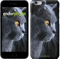 """Чехол на Xiaomi Mi4c Красивый кот """"3038c-178"""""""
