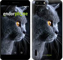 "Чехол на Huawei P9 Красивый кот ""3038u-347"""