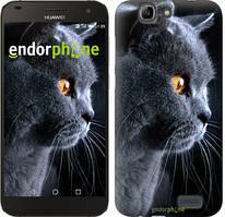 """Чохол на Huawei Ascend G7 Красивий кіт """"3038u-147"""""""