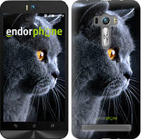 """Чехол на Asus ZenFone Selfie ZD551KL Красивый кот """"3038u-116"""""""