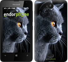"""Чехол на Microsoft Lumia 430 Красивый кот """"3038u-153"""""""