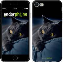 "Чехол на iPhone 7 Дымчатый кот ""825c-336"""