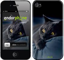 "Чехол на iPhone 4s Дымчатый кот ""825c-12"""
