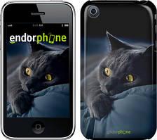 "Чехол на iPhone 3Gs Дымчатый кот ""825c-34"""