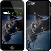 Чехол на iPod Touch 5 Серый, Дымчатый кот