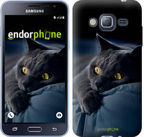 Чехол на Samsung Galaxy J3 Duos (2016) J320H Серый, Дымчатый кот