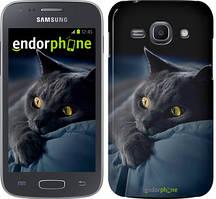 """Чохол на Samsung Galaxy J1 (2016) Duos J120H Димчастий кіт """"825u-262"""""""