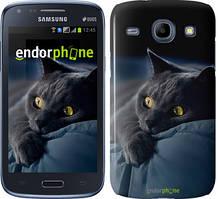 Чехол на Samsung Galaxy J1 Ace J110H Серый, Дымчатый кот