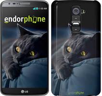 """Чехол на LG G2 Дымчатый кот """"825u-37"""""""