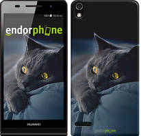 "Чехол на Huawei Y6 II Дымчатый кот ""825u-338"""