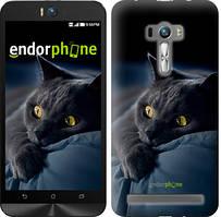 """Чехол на Asus ZenFone Selfie ZD551KL Дымчатый кот """"825u-116"""""""