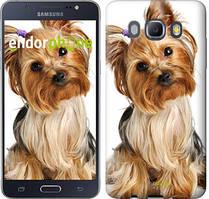Чехол на Samsung Galaxy J5 (2016) J510H Коричневый, Йоркширский терьер с хвостиком