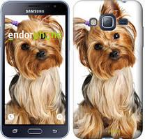 Чехол на Samsung Galaxy J3 Duos (2016) J320H Коричневый, Йоркширский терьер с хвостиком
