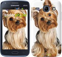 Чехол на Samsung Galaxy J1 Ace J110H Коричневый, Йоркширский терьер с хвостиком