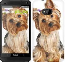 """Чехол на HTC One M7 Йоркширский терьер с хвостиком """"930c-36"""""""
