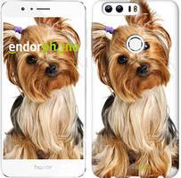 """Чехол на Huawei Honor 8 Йоркширский терьер с хвостиком """"930u-351"""""""