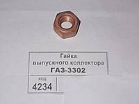 Гайка выпускного коллектора ГАЗ-3302 (омедненная) усиленная, каталожный № 66-1008035-01  трактора, грузовой машины, тягача, эскаватора, спецтехники